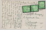 549 (3x) als reine MiF auf Auslandspostkarte von Landau nach Piedmont (USA)