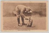 DOA, 1911, Mi.- Nr.: 31, als EF auf Bildpostkarte von Daressalam nach Spandau (Berlin)