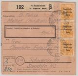 191 (4x, 3x vs. 1x rs.) als reine MeF auf Paketkarte, sehr selten!